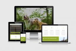 DoggyBreak, mkb, kleine ondernemer website, zzp, zpp website, mkb, mkb website, webdesign, website aanbieding, mkb aanbieding, zzp aanbieding, netcept